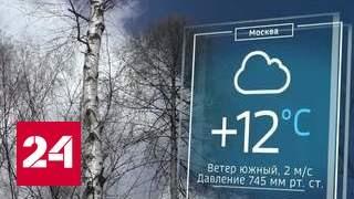 В столице объявлено штормовое предупреждение