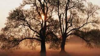 [SINGLE PROMO]BELINDA WIL-ENVIE D'AIMER-2010