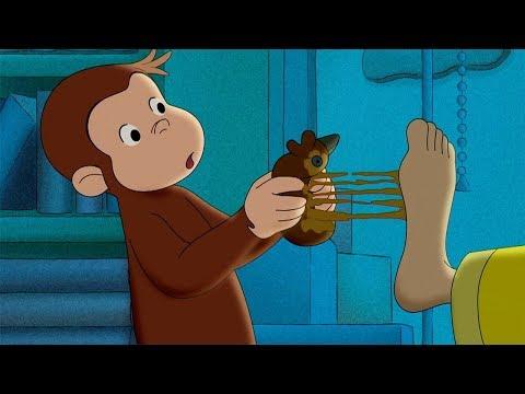 Jorge el Curioso en Español 🐵Jorge y Sus Cinco Sentidos  🐵 Compilación 🐵 Caricaturas Para Niños