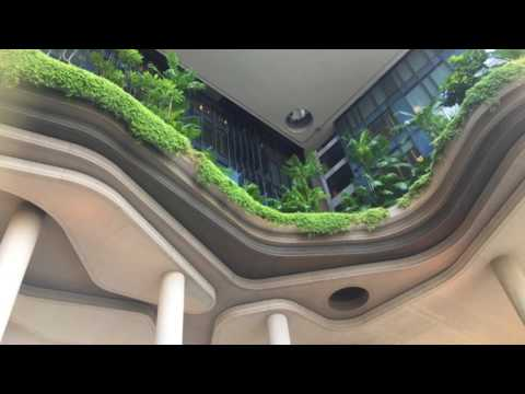 Eco green hotel- Park Royal Hotel, Singapore