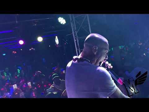 Baby Rasta y Gringo Live at The Coliseum (Watch in 4K)
