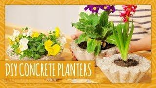 Diy Concrete Planters - Hgtv Handmade