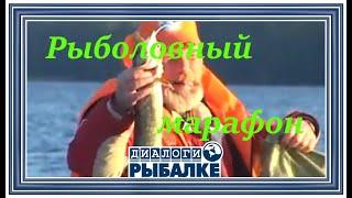 Диалоги о рыбалке - 045 / Рыболовный марафон