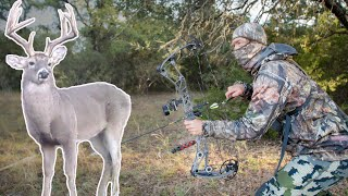 Hunting Trophy Bucks from the Ground! | Bow Hunt for Big Pond Deer