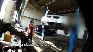 Pinigų karta | Eksperimentas - jauna vairuotoja autoservise (2013-05-07)