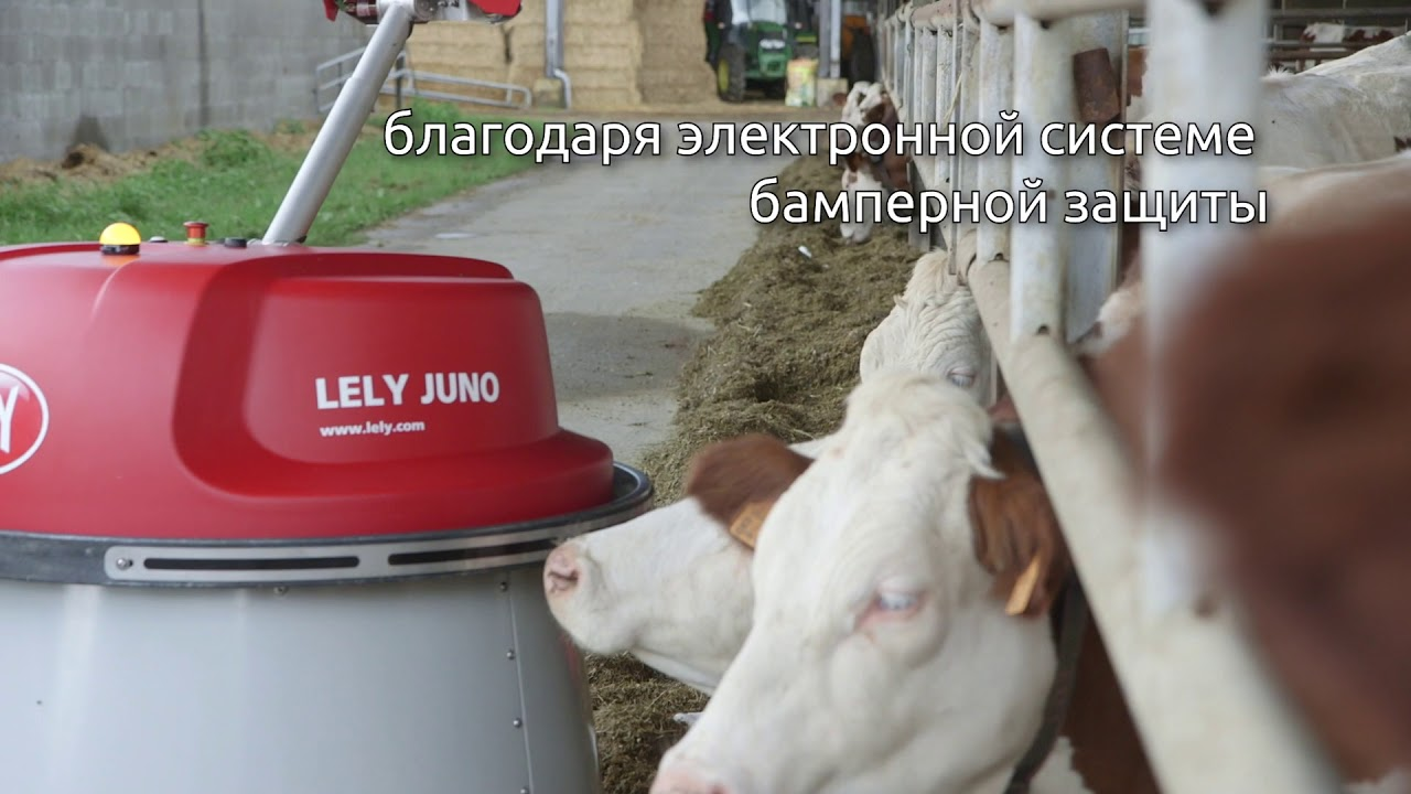 Lely Juno product video - Pусский / RU