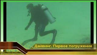 Водные развлечения. Первое погружение #3. Дайвинг в Египте Красном море отдыхаем. Начинающие дайверы(Первое погружение #3. Дайвинг в Египте Красном море, отдыхаем в Египте. Начинающие дайверы это сплошные прик..., 2009-12-25T17:20:16.000Z)