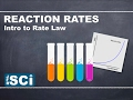 Rate Law: Intro to Reaction Order