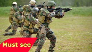 How Military Camouflage Works   Camouflage Documentary   World Geographic Channel