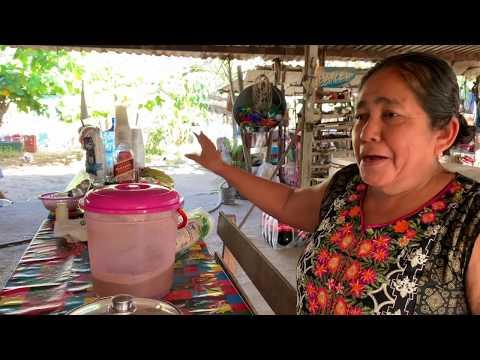 BONITO PASEO POR LA PRESA DEL GUINEO   AYUTLA, GRO.