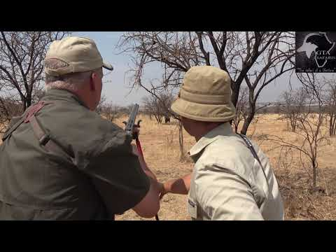 Nyala With A Double Rifle. Gateway To Africa Safaris
