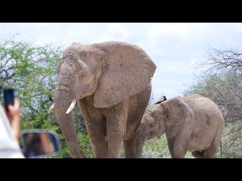 Bester Tag trotz dickem Auge - verliebt in Namibia | VLOG #181