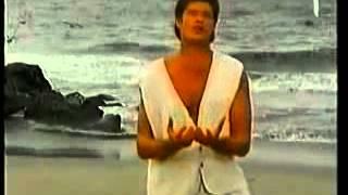 David Hasselhoff  - Du - Official Music Video YouTube Videos