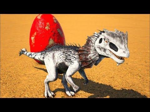 Bebêzinho Dilophosaurus Em Busca Da Felicidade e Sobrevivência! Ark Dino Evolved (PT/BR)