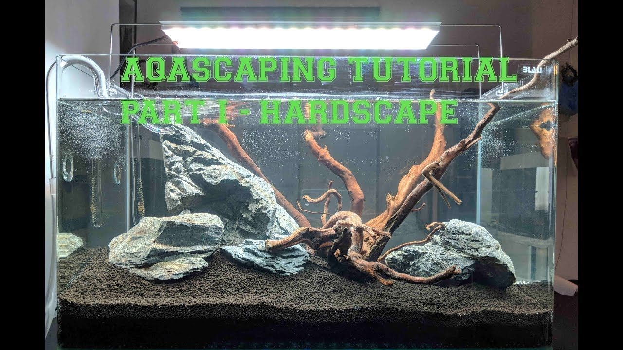 Aquascaping Anfänger Tutorial Teil 1 - Hardscape [Busy Dad ...