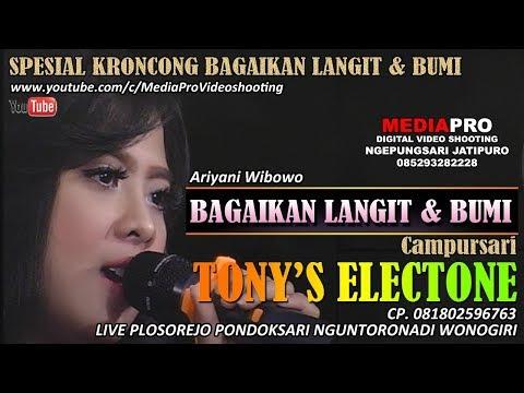 KRONCONG TERBARU TONY'S Electone BAGAIKAN LANGIT & BUMI | ARIANI WIBOWO Mp3