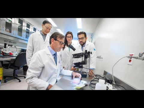Celebrating 100 Years of diabetes research at the University of Alberta