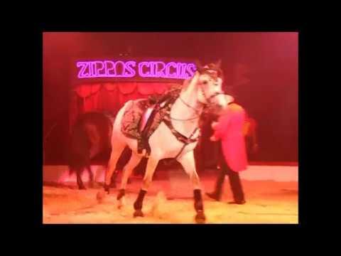 Zippos Circus Carnaval 2013   the show