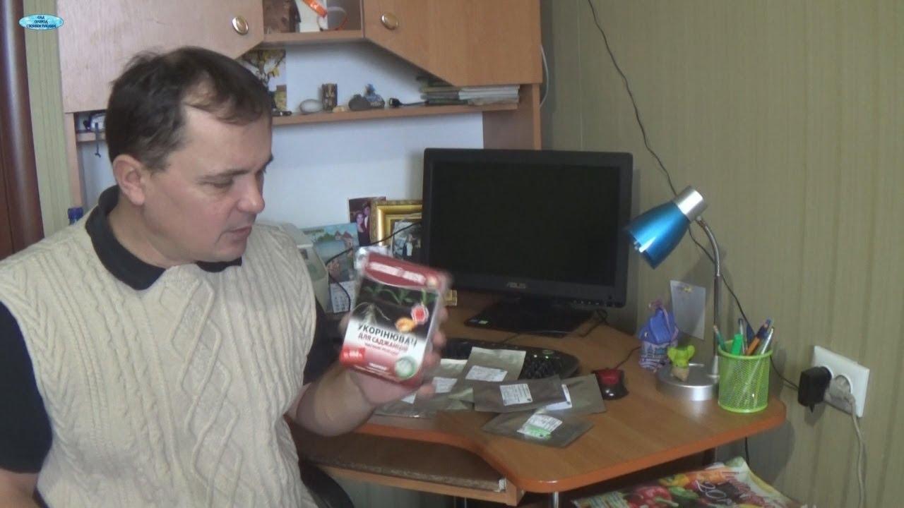 Сельский Вестник Украина - орхидея красавица тайджун - YouTube
