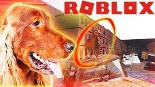 THIS IRISH SETTER SURVIVED BUT NO HUMANS DID! ROBLOX - Roleplaying Game, Children Friendly Lets Play