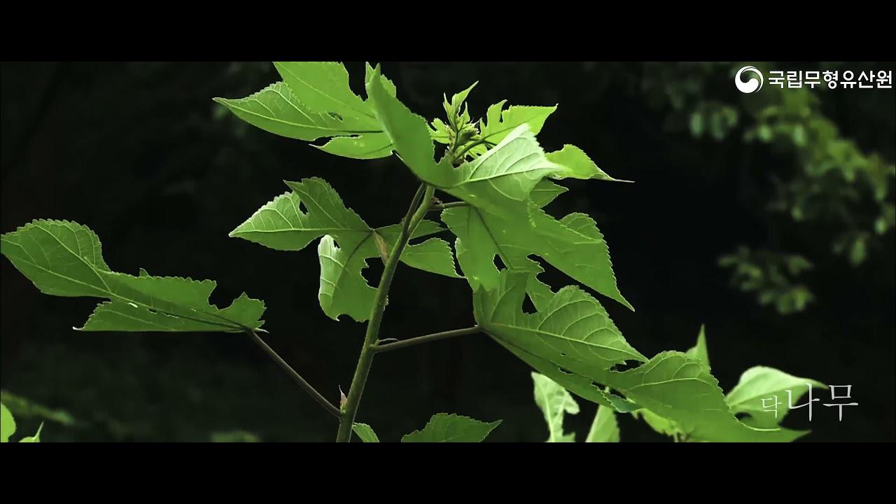 [휴(休), 무형유산] - 자연과 무형유산