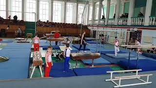 Соревнования спортивная гимнастика  3 разряд Арефьев Егор(3)