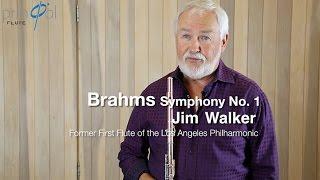 Мастер класс (флейта) Джим Уолкер, легенда Америки.