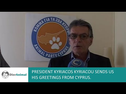 Animal Party Cyprus greetings to DierAnimal