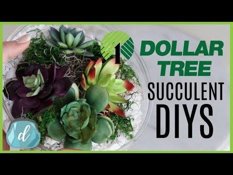 DOLLAR TREE Crate & Barrel DIY Dupes! 💚 Succulent Terrariums and Bowls
