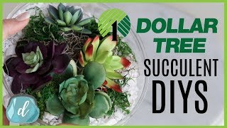 DOLLAR TREE Crate & Barrel DIY Dupes! 💚 Succulent Terrariums and Bowls