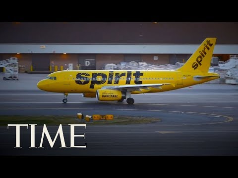 Spirit Airlines Slams Student Who Was Forced To Flush Emotional Support Hamster Down Toilet | TIME