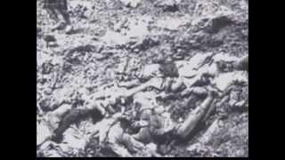 WW2 - Waffengattungen und spektakuläre Aufnahmen - Panzer