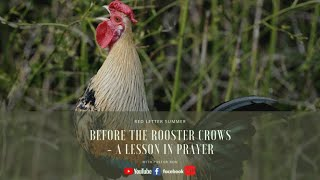 Before The Rooster Crows -A Lesson In Prayer