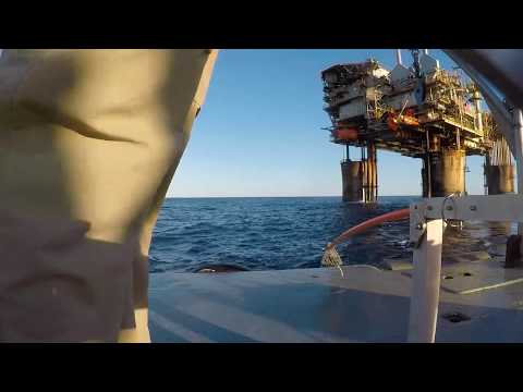 Offshore oil and gas platforms as novel ecosystems
