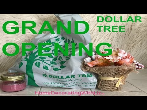 Grand Opening At Dollar Tree!! Let's go see What They Have : )