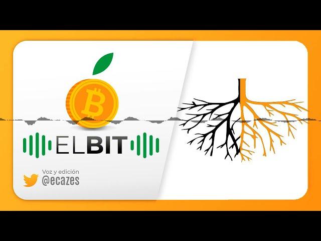 Estacionamiento en bitcoin, New York trata de detener la mineria por 3 anos, Taproot a 47%, NYD...