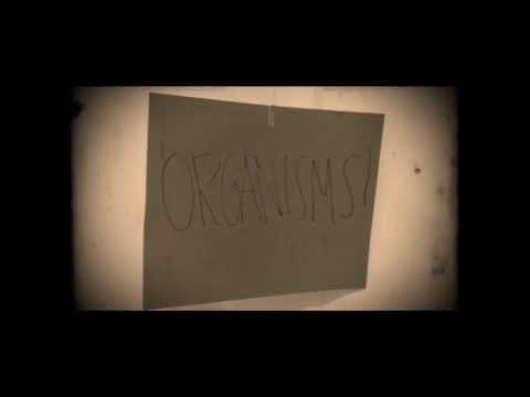 Precambrian Movie