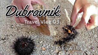 [Day3] 코시국 해외여행/크로아티아 (두브로브니크 …