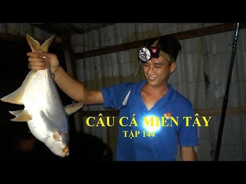 CÂU CÁ TRA ĐÊM TRÊN BÈ | HUYNH KHOA FISHING