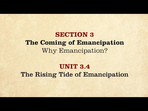 MOOC | The Rising Tide of Emancipation | The Civil War and Reconstruction, 1861-1865 | 2.3.4