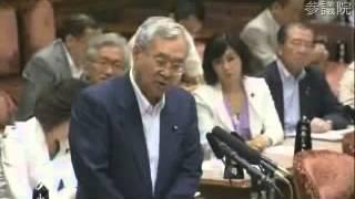07 24 参議院 予算委員会 山崎力議員(自民)