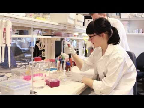 Karolinska Institutet: Biomedicinprogrammet
