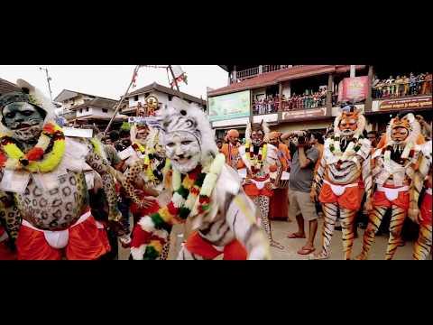 Udupi krishna janmashtami 2017 / Pilivesha / Tiger dance 2017 😻