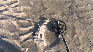 Whites TDI Pro Pulse Metal Detector at the BEACH