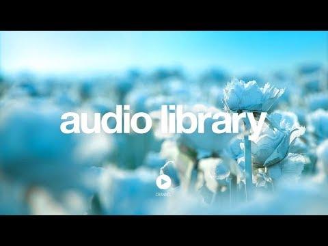 [No Copyright Music] Lightness - Nomyn