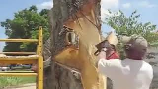 Style cutting tree