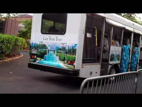 Laie Tram Tour