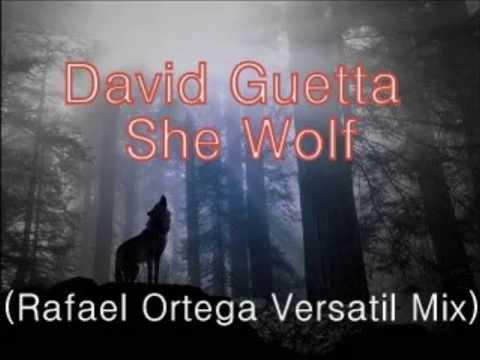 David Guetta - She Wolf (Rafael Ortega Versatil Mix)