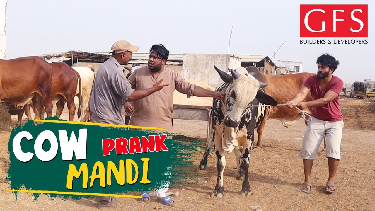   Cow Mandi Prank   By Nadir Ali & Team in   P 4 Pakao   2020
