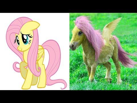 МОИ МАЛЕНЬКИИ ПОНИ В РЕАЛЬНОЙ ЖИЗНИ 2017 (My Little Pony